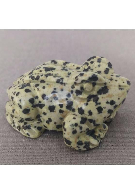Frog BIG Dalmatian JASPER DALMATINA Minerals ANIMALS MINERALS Gift Idea-1