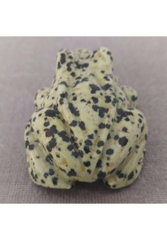 Frog BIG Dalmatian JASPER DALMATINA Minerals ANIMALS MINERALS Gift Idea-2