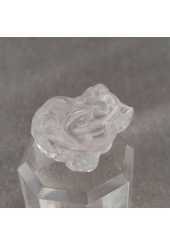 Frog in Hyaline Quartz Rock CRYSTAL ANIMALS Crystal Healing Fengh Shui A+-2