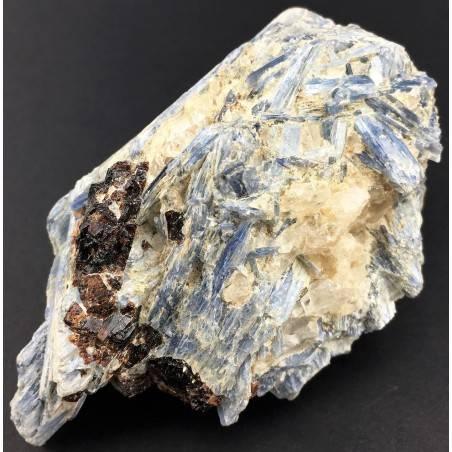 Raro Campione CIANITE con QUARZO e STAUROLITE Minerali GREZZO Cristalloterapia-3