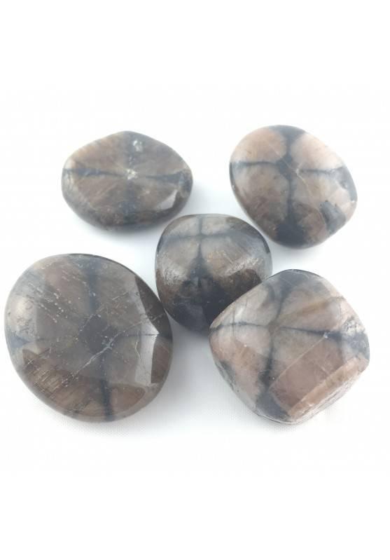Chiastolite Andalusite Pietra Chakra Gemma Minerale Cristalloterapia Burattati-1