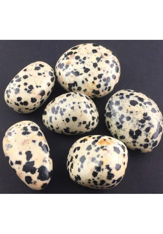 Dalmatian JASPER MINERALS Tumbled Stone Crystal Healing [ Dalmatian Jasper Tumbled ]-1