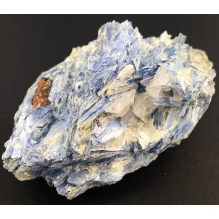 Rough BIG Kyanite with Quartz Crystal Healing Specimen Chakra Minerals Stone-2