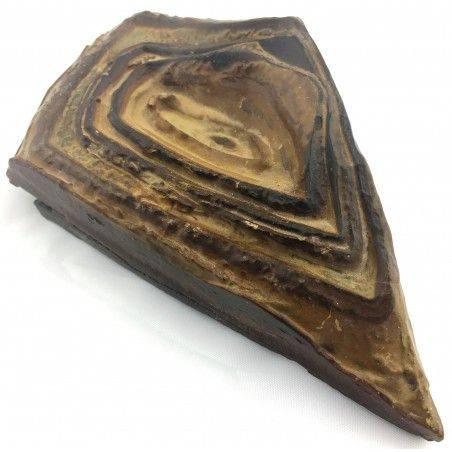 * Minerali * STROMATOLITE GIGANTE GREZZA Pakistan Cristalloterapia Collezionismo-1
