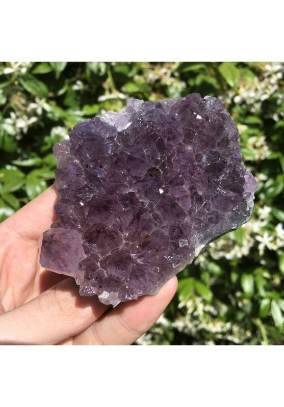 Chunk of Rare Amethyst Druze Crystal Collectable Violet with Quartz-3