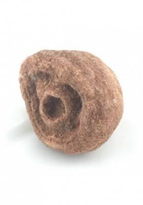 Rough STROMATOLITE MINERALS Brown Chakra Crystal Healing Stone Talisman-2