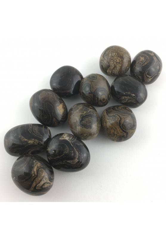 Stromatolite Stone Tumbled MINERALS Chakra Reiki Zen Crystal Healing-1