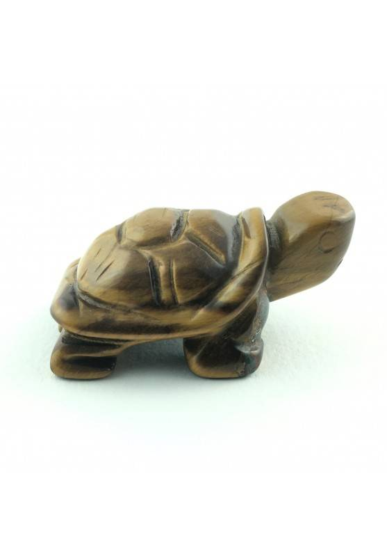Turtle in TIGER'S EYE Home Animals Crystal Healing Specimen MINERALS Zen-1