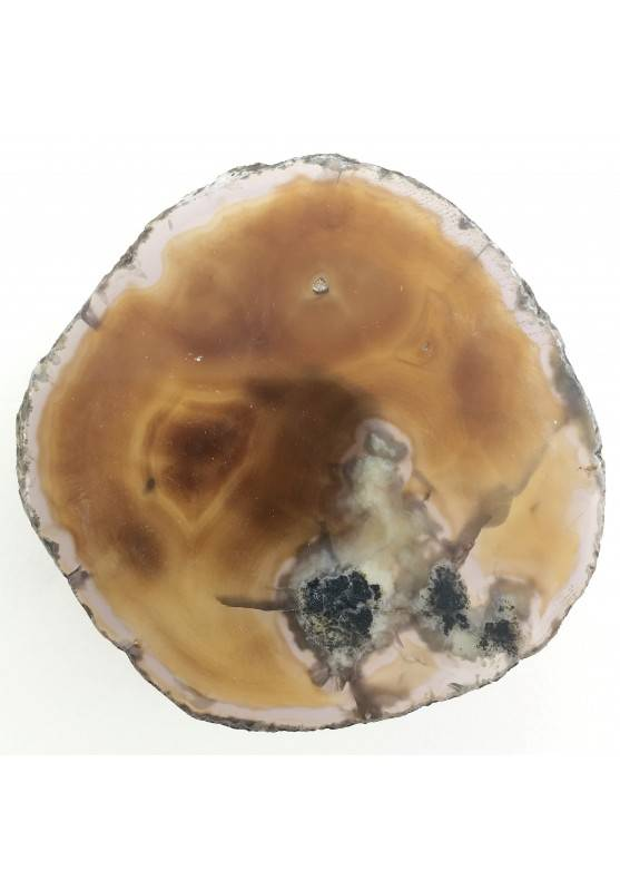 Gorgeous AGATE SLICE Light Brown Specimen Minerals Crystal Healing Furniture-1