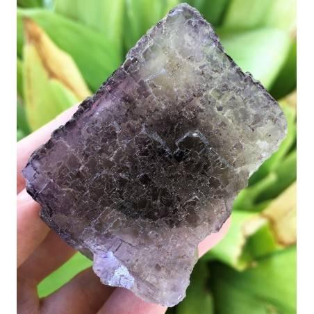 MINERALS Wonderful Specimen of Purple Fluorite with Double Spirit MEXICO Chakra-4