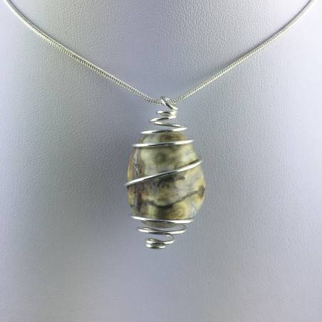 Ocean JASPER Orbicolar Pendant Tumble Stone - LEO GEMINI PISCES Zodiac Silver A+-7