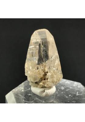 EXTRA Pure Rough KUNZITE Point RARE Piece Crystal MINERALS Crystal Healing 2.5g-4
