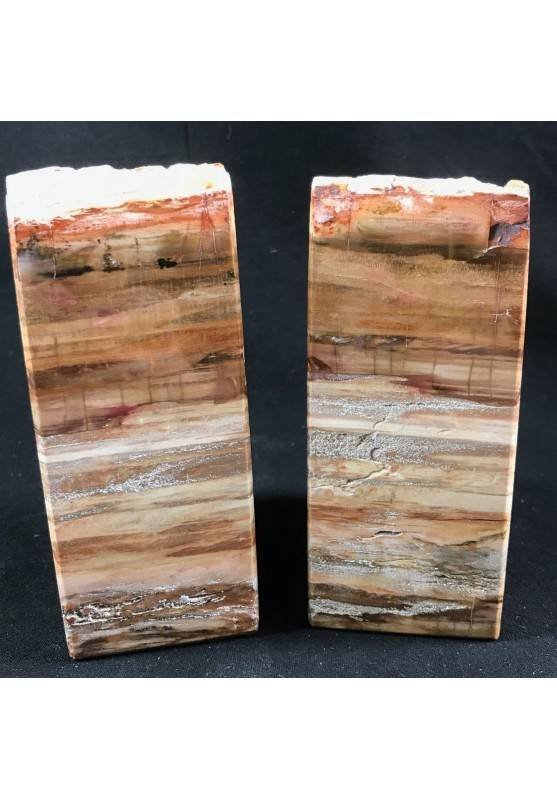 MINERALS * Rare Petrified WOOD Fossil Bookends Paperweight High Quality Specimen A+-5