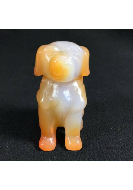 CARNELIAN AGATE Dog Medium ANIMALS Crystal Healing Gift Idea A+-5