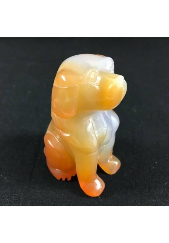 CARNELIAN AGATE Dog Medium ANIMALS Crystal Healing Gift Idea A+-6