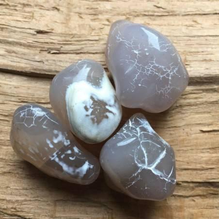 SNAKESKIN AGATE Mid SIZE Tumble Stone Zen [ Snakeskin Agate Tumbled Medium Crystals-1