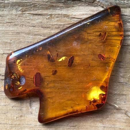 Mexico Amber Fossils CHIAPAS AMBER Wonderful Crystal Healing Very High Quality A+-2