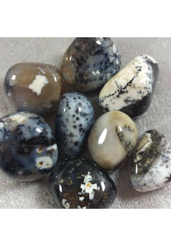 Tumbled Dendritic Agate EXTRA MINERALS Tumbled Crystals Crystal Healing-1
