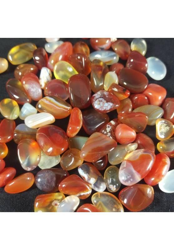 CARNELIAN Tumbled Stone Mignon 50g Tumbled Stone MINERALS Crystal Healing Chakra Reiki-1