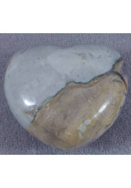 HEART in Fossil Petrified Wood Tumbled Stone BIG Crystal Healing LOVE MINERALS Naturals-2