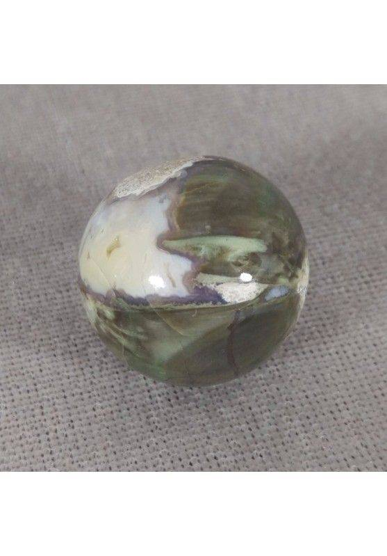 Sphere in Fossil Petrified Wood Rare Crystal Healing Massage MINERALS Crystals Chakra−3