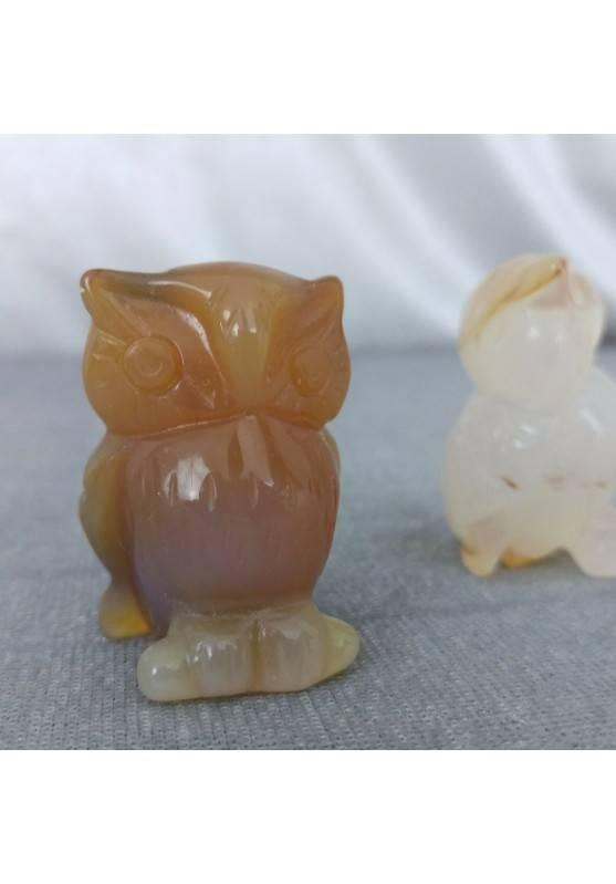 Gufo in Corniola Arredo ANIMALI Cristalloterapia Minerali Lavorati Feng Shui Zen-1
