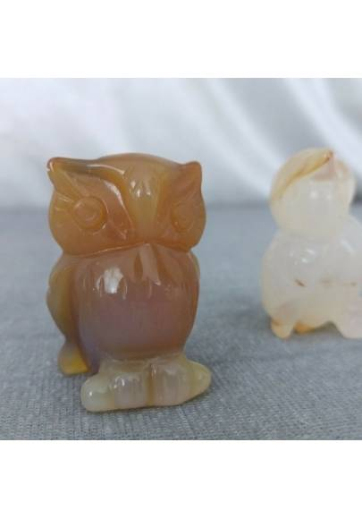 Owl in CARNELIAN Home ANIMALS Crystal Healing MINERALS Polished Feng Shui Zen-1