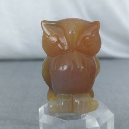 Owl in CARNELIAN Home ANIMALS Crystal Healing MINERALS Polished Feng Shui Zen-2