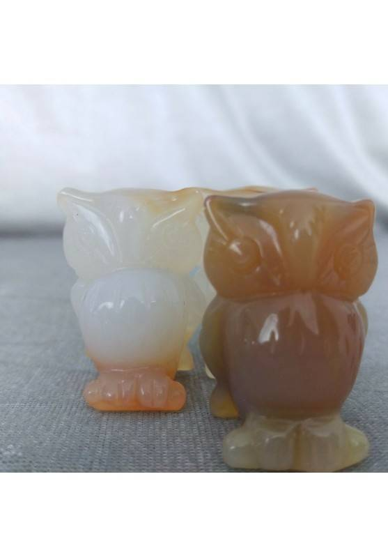 Owl in CARNELIAN Home ANIMALS Crystal Healing MINERALS Polished Feng Shui Zen-4