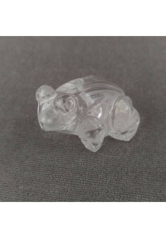 Frog in Hyaline Quartz o Rock CRYSTAL ANIMALS Chakra Buddha MINERALS-2
