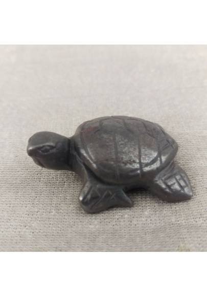 Water Turtle in Hematite Natural ANIMALS Chakra Buddha Feng Shui Wicca Zen-1